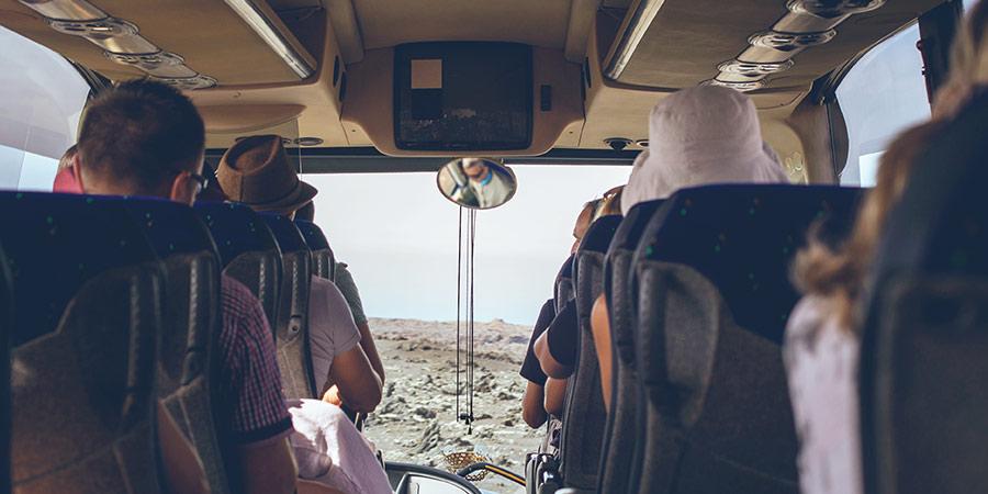 wynajem busów